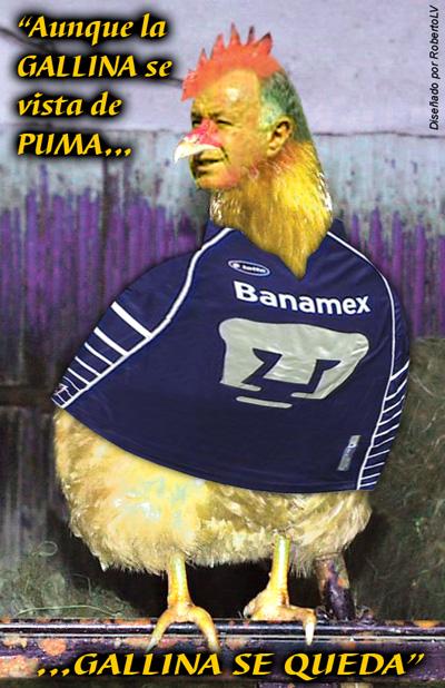 Pumasfutbol.com | MEXICO PUMAS UNAM FUTBOL